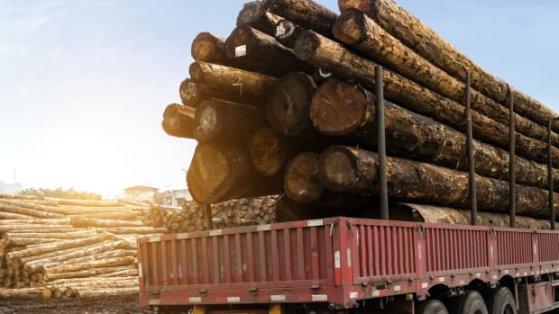 Weyerhaeuser Tumbles After an Earnings Miss