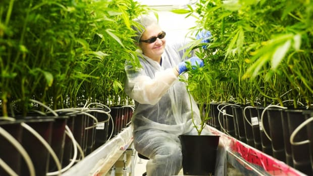 Aphria Soars, Other Pot Stocks Mixed Following Hostile $2 Billion Bid