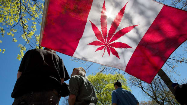 Pot Stocks Get Routed on the Same Day Cannabis Is Legalized in Canada