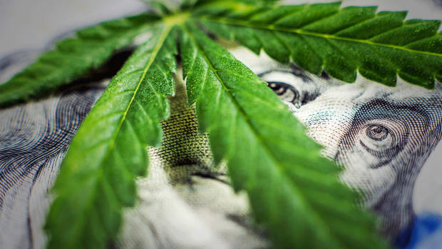 Cannabis Industry Sits on Precipice of Major Expansion