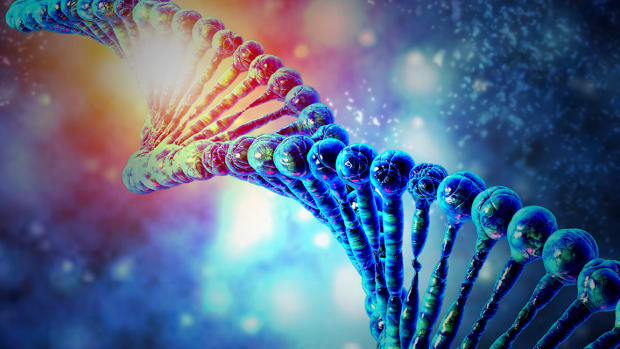 Why Investors Should Favor Smaller Biotech Companies