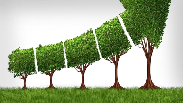 What the Future of ESG Investing Looks Like for Second Half of 2019