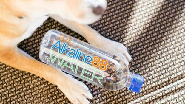 Alkaline Water CEO on the CBD-Infused Drink Explosion
