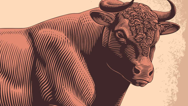 Will the 10-Year Bull Run Continue? What Could Stop It?