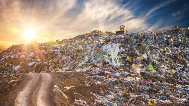 There's Actually a Correlation Between Economic Growth and Waste