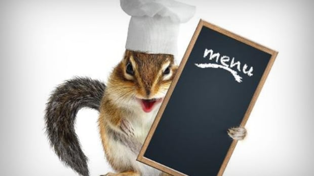 Roadkill Cuisine: Can You Eat That?