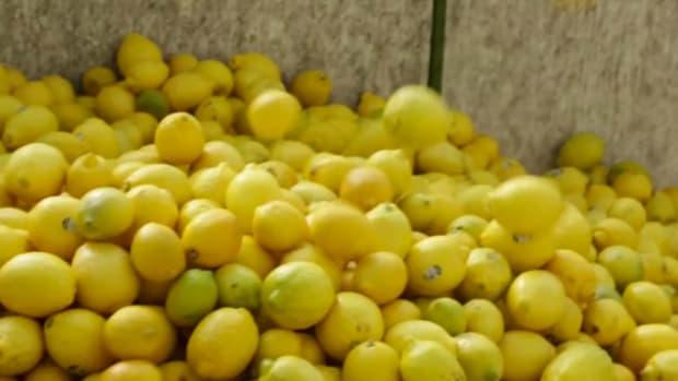 Limoneira's Big Opportunity in Lemon Sales