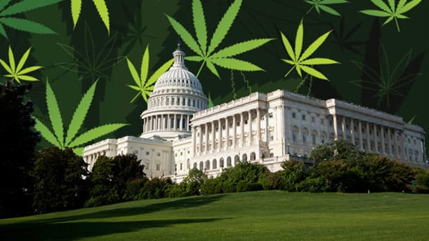Don't Expect Congress to Move Quickly on Marijuana
