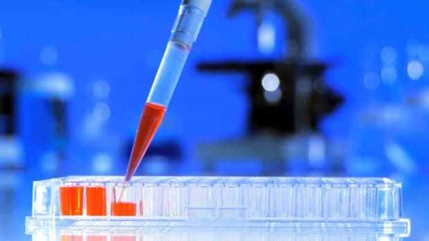 Biotech Selloff Does Not Dim Immunotherapy Advances Says Cellectis CEO