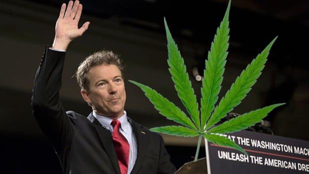 3 Pot Stocks to Buy If Rand Paul Becomes President