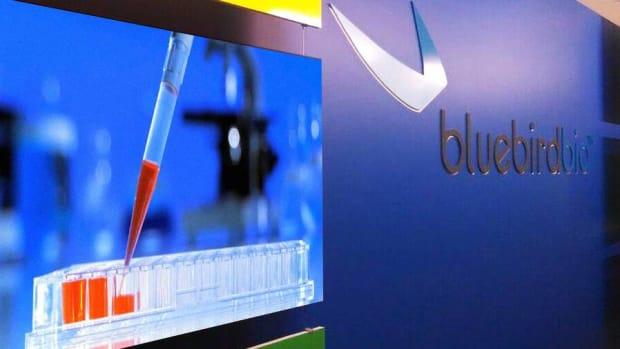 Bluebird, Pacira Pharmaceuticals Gain Steam in Burgeoning Life Science Space