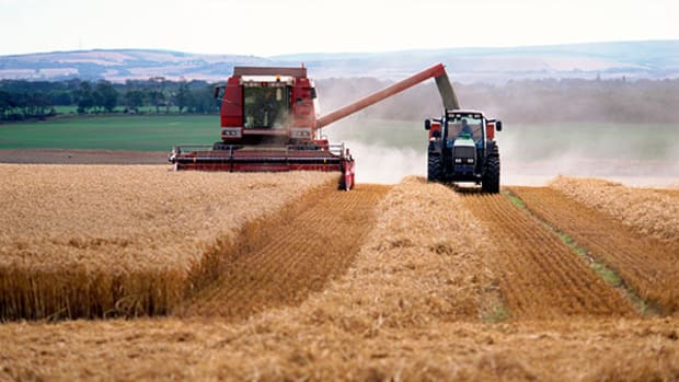 Watch Grain Markets and Monsanto for Price Gains From Ukraine Crisis