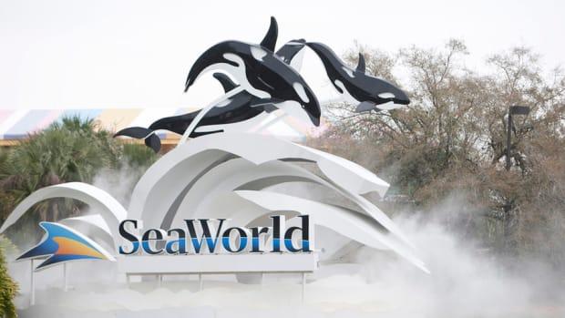 SeaWorld Strikes Back 'Misinformation'; Stocks Open Mildly Higher