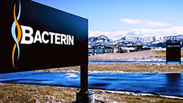 4 Health Care Stocks Under $10 to Watch: ImmunoGen, Bacterin and More