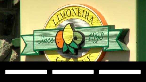 Lemon Power Unleashing Limoneira Shares