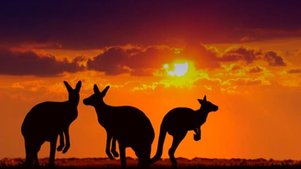 15 Things You Didn't Know About the Australian Economy