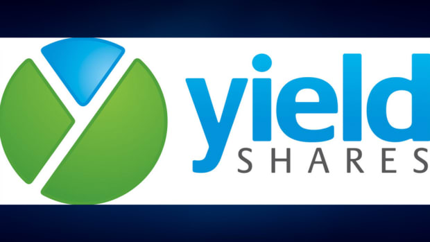New YieldShares ETF Offers High Income Option