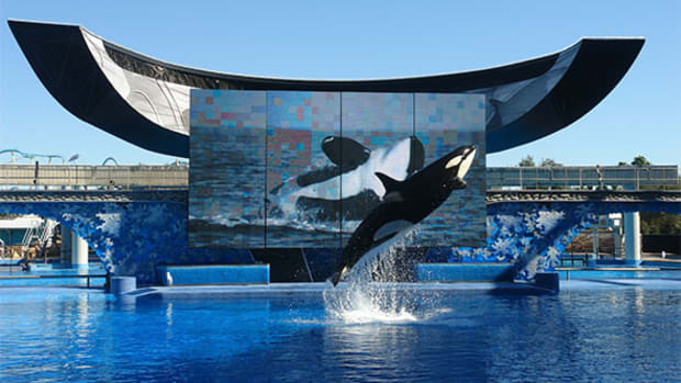 SeaWorld (SEAS) Stock Price Target Lowered at Barclays