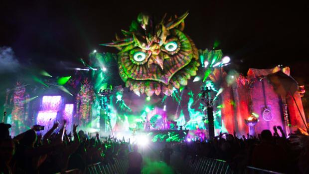 Electric Daisy Carnival Brings Festival Finance Boom