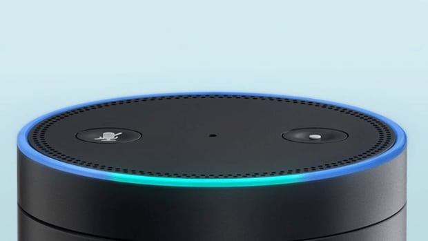 Amazon Is Using Alexa to Carve Out a Huge Lead in the Voice Shopping Market