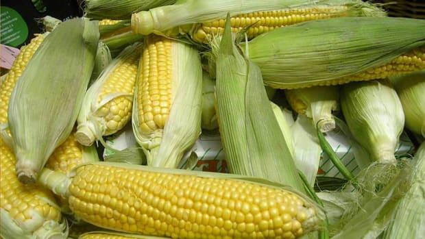Beaten Down Corn, Wheat and Soybean ETFs Ready to Grow Again