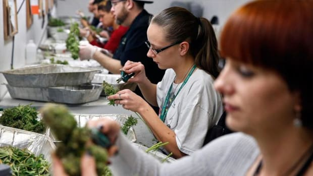 The Canadian Cannabis Market Has a 'Lot of Room to Run'
