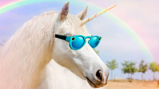 Next Tech Unicorn to Go Public After Snap?