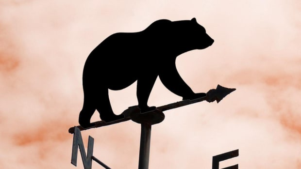 Weather Vane Bear Market Economy