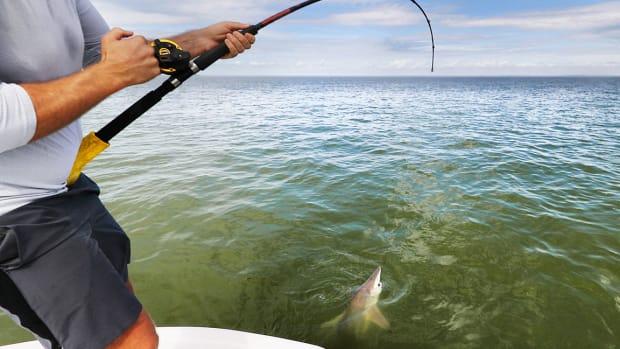 32 shark fishing sh