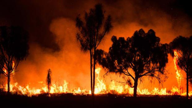 Australia Bushfires Lead