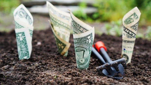 ESG plant photo