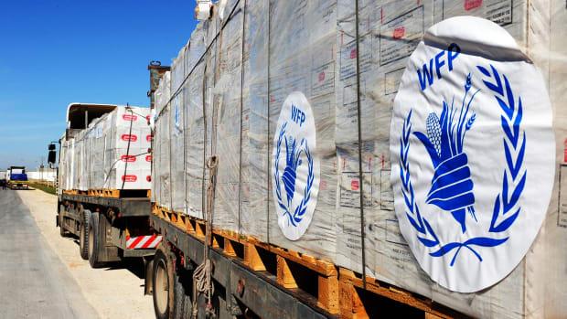 World Food Programme Lead