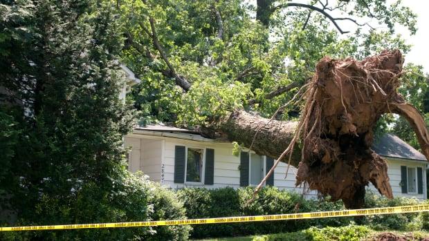 home insurance tree house damage storm sh