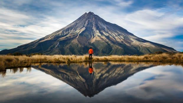 7 New Zealand sh