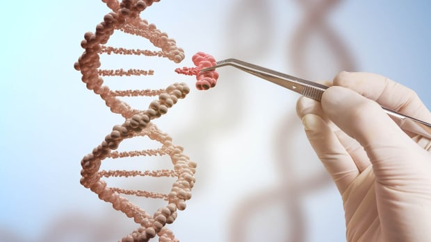 gene_editing_a_1600