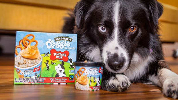 Ben & Jerry's Doggie Desserts Lead