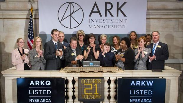 Ark Investment Lead