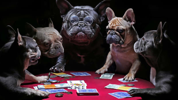 Dogs Playing Poker Lead