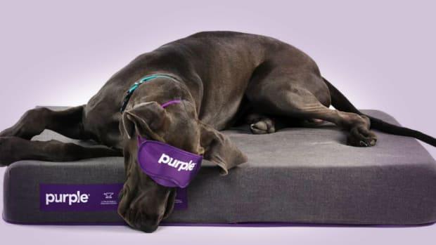 Purple Innovation Lead