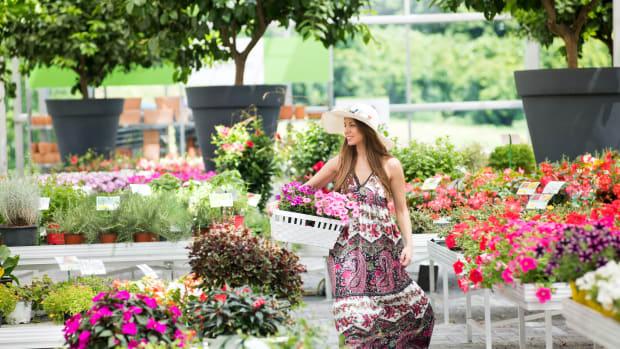 pavini april buys garden nursery shop sh