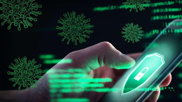 Coronavirus Online Scams Lead