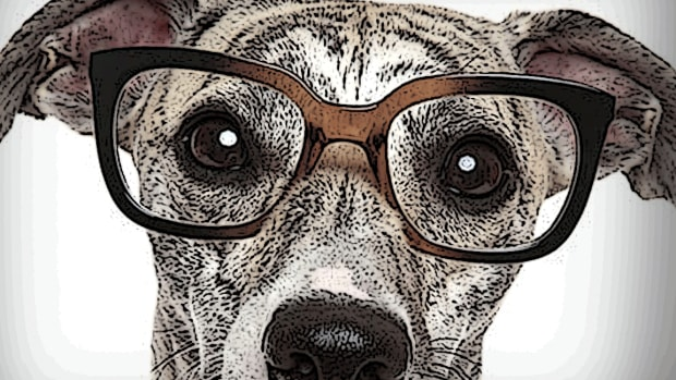 August Best Buys: Eye Care, Back-to-School Sales, Wine