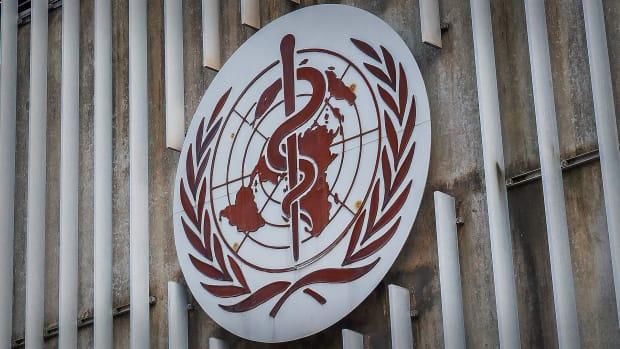 World Health Organization Lead