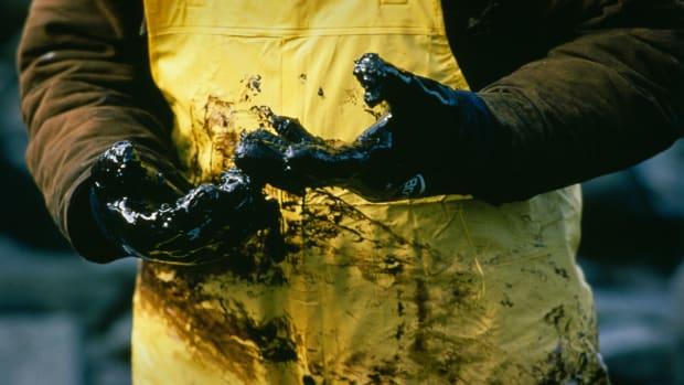 Exxon Valdez Disaster Thumb
