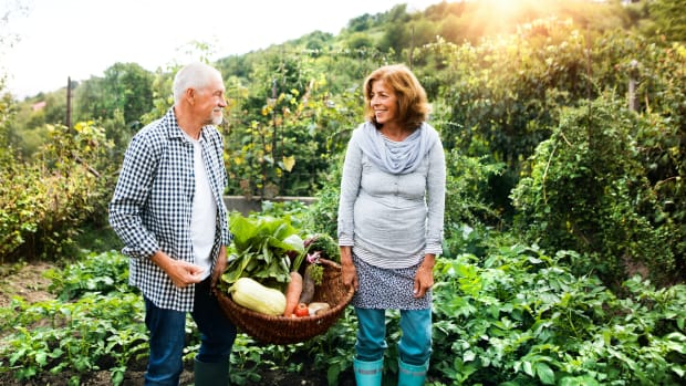 retire wealth lifestyle garden sh