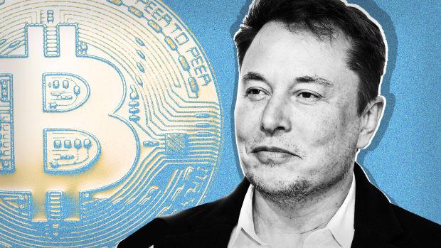 Elon Musk Bitcoin Lead