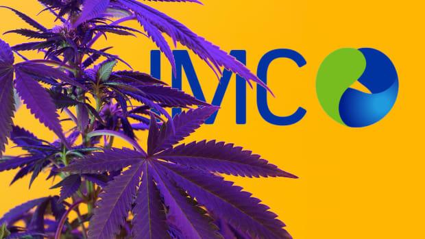 IM Cannabis Lead