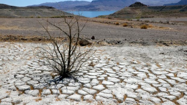 Lake Mead, which serves seven U.S. states and three Mexican states, is drying up.