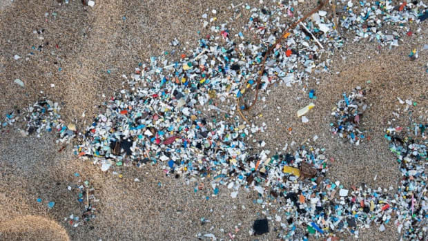 Plastic fragments washed onto Schiavonea beach in Calabria, Italy, in a 2019 storm.
