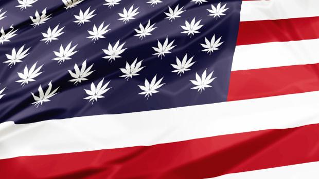 Cannabis Weed Marijuana Federal Lead